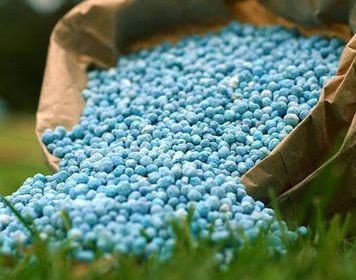 granulirovannoe-udobrenie-dlya-cvetov