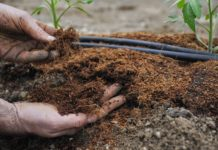 подготовка почвы теплиц
