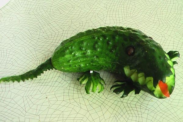 огурец аллигатор