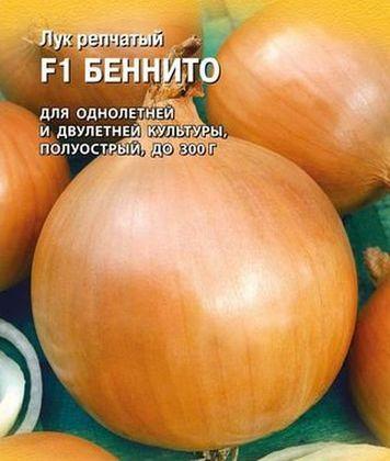 лук репчатый Беннито