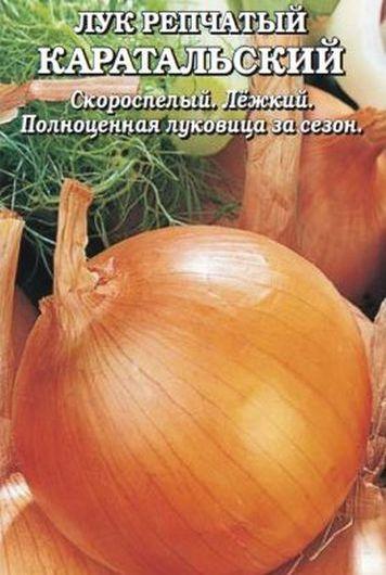 лук репчатый Каратальский
