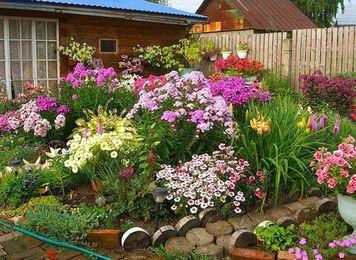Клумбы непрерывного цветения-11