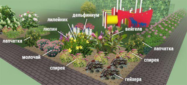 Клумбы непрерывного цветения-2