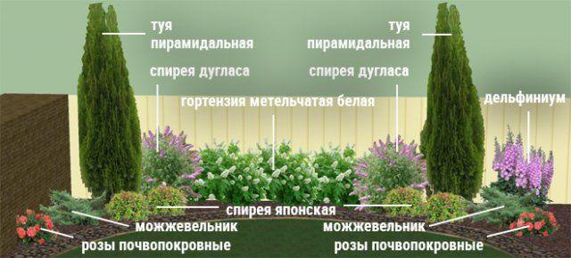 Клумбы непрерывного цветения-3