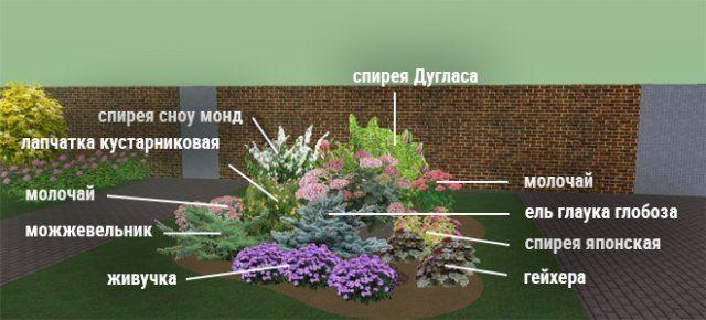 Клумбы непрерывного цветения-5