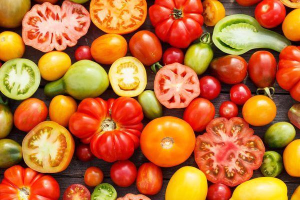 Самые ранние томаты