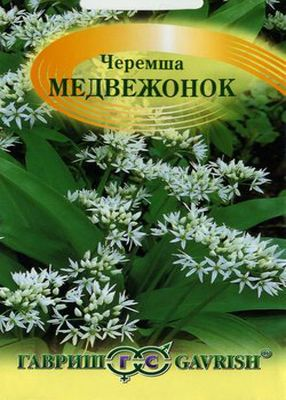 cheremsha-14