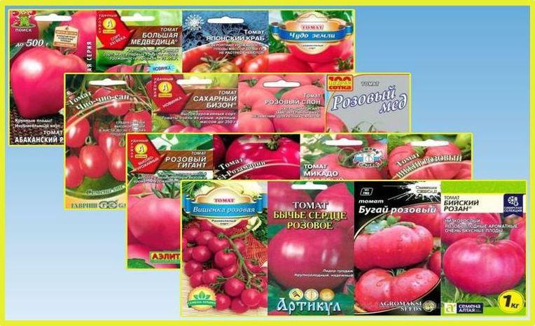 Томат розовый рассвет описание и характеристика сорта урожайность с фото