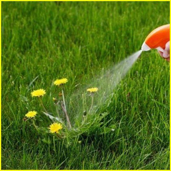 опрыскивать гербицидами